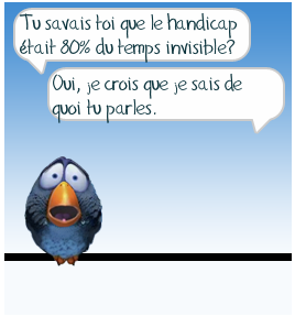 handicap-invisible-oiseau